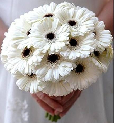Букет невесты недорого каллы купить цветов коровий