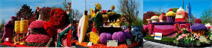 Фото выставок цветов голландии 55