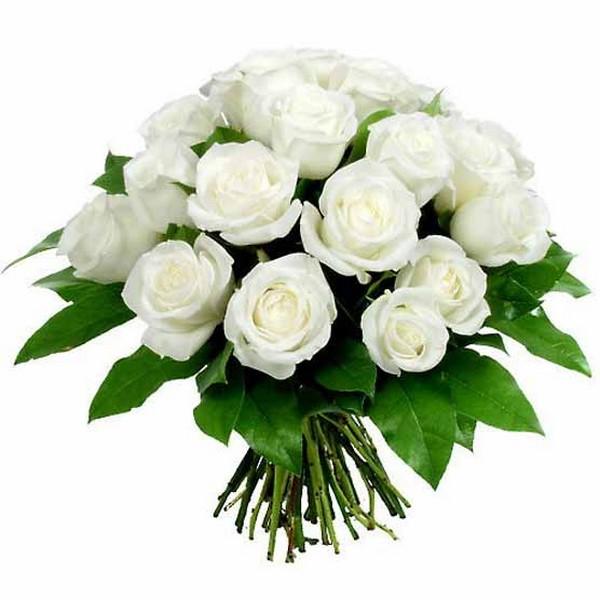 Букет из белых роз ирина круг и виктор королев - 44f1